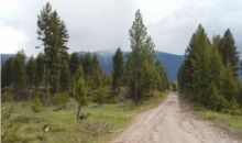 331.58 Acres Cottonwood Lakes Road Seeley Lake, MT 59868