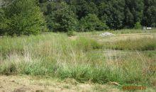 11 hidden acres METROPOLIS ILL, IL 62960